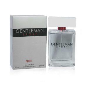 Gentlemen Sport - The One Gentleman by Dolce & Gabbana, Alternative, Impression, Version or Type